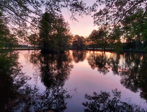 Wasserspiegelungen am Abend