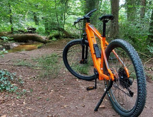 Mit dem Rad im Holter Wald unterwegs
